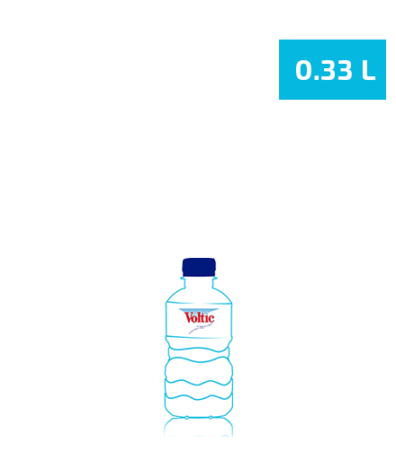 0.33L